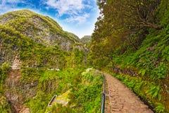 Madeira, idyllic landscape Royalty Free Stock Image