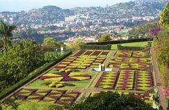 Madeira island.Botanical garden. Madeira island, the pearl of the Atlantic Stock Photo