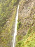 Madeira island Stock Images