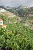Madeira island, Portugal Royalty Free Stock Photos