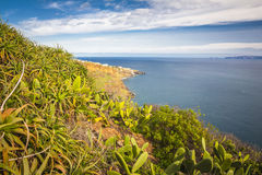 Madeira island, Portugal Royalty Free Stock Photography