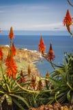 Madeira island, Portugal Stock Photo