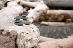 Madeira lançada à costa e montes de pedras Foto de Stock