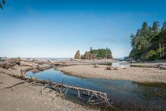 Madeira lançada à costa em Ruby Beach Foto de Stock