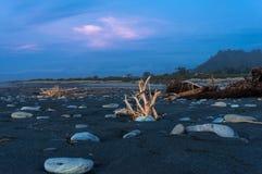 Madeira lançada à costa na praia no por do sol Fotos de Stock