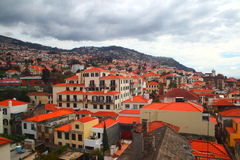 Madeira landscape, portugal Stock Photography