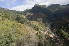 Madeira-Landschaft Stockfotos