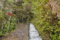 Madeira levada Stockbilder