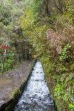 Madeira levada Lizenzfreies Stockfoto