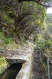 Madeira levada Stockbild