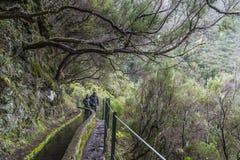 Madeira Levada und Touristen auf der Spur Lizenzfreie Stockfotografie