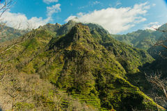 Madeira mountain view (2). Mountains of Madeira island. View in the canyon leading from the south side of the island to São Vicente in the north side royalty free stock photography