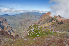 Madeira mountains. Mountains near pico do arieiro on madeira island, portugal Stock Photo