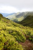Madeira Mountains Stock Photos