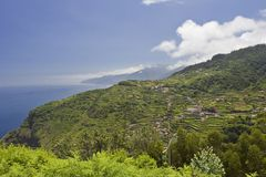 Madeira Mountains V. Climbing up to the roof of Madeira royalty free stock photo