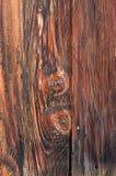 Madeira murcho Fotos de Stock Royalty Free