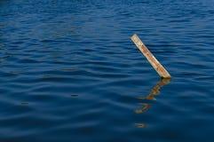 Madeira na água Imagens de Stock Royalty Free