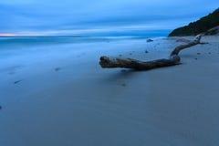 Madeira na praia Foto de Stock