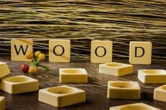 Madeira nas letras Imagens de Stock