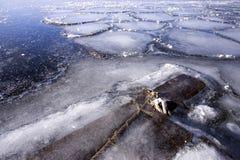 Madeira no gelo em um lago imagem de stock