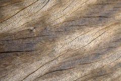 Fundo de madeira da prancha imagens de stock