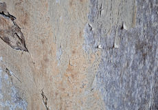 Madeira que risca e que descasca Fotografia de Stock Royalty Free