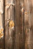 Madeira rústica Fotos de Stock