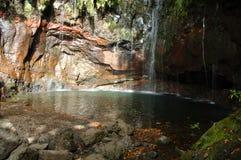 Madeira, Rabacal, 25 Fontens Stockfotografie