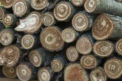 A madeira registra o fundo imagens de stock royalty free