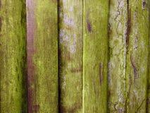 Madeira resistida velha Fotos de Stock