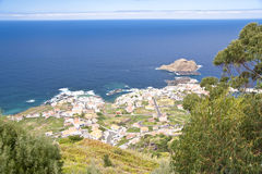 Madeira Royalty Free Stock Images