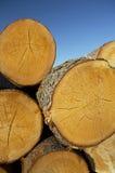 madeira serrada Imagens de Stock