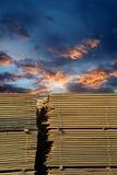 Madeira serrada empilhada Fotos de Stock