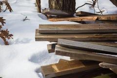 Madeira serrada nas madeiras congeladas cercadas pela neve imagem de stock royalty free