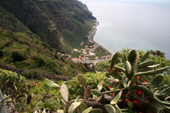 Madeira - the south coast royalty free stock image
