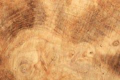 Madeira-textura Fotos de Stock Royalty Free