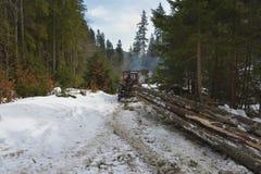 A madeira/trator de derrapagem é árvores cortadas de derrapagem fora da floresta fotos de stock royalty free