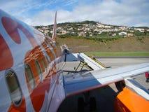 Madeira und das Flugzeug Stockbild