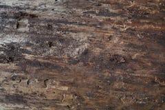 A madeira velha Foto de Stock Royalty Free