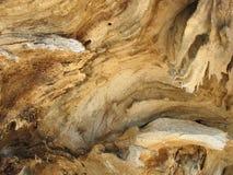 Madeira velha. Fundo. Foto de Stock