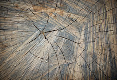 A madeira velha racha a textura Foto de Stock Royalty Free