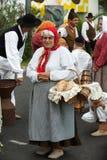 Madeira-Wein-Festival in Funchal Lizenzfreies Stockbild
