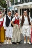 Madeira Wine Festival Royalty Free Stock Photos
