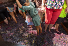The Madeira Wine Festival in  in Estreito de Camara de Lobos, Stock Images