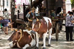 Madeira Wine Festival in Funchal Stock Image
