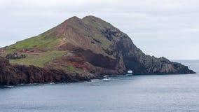 Madeiraberg- och klippakaktus Fotografering för Bildbyråer