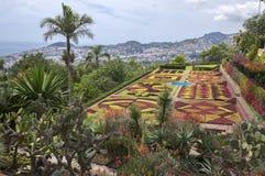 Madeirabotanisk trädgård, Funchal/MADEIRA - April 22, 2017: Den fantastiska mosaiken som göras av färgrika växter, är den största royaltyfri bild