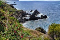 Madeirakust royaltyfri foto