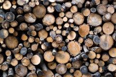 Madeiras Foto de Stock Royalty Free
