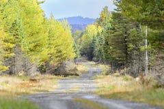 Madeiras de Maine da estrada de terra foto de stock